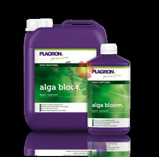 Plagron Alga Bloom 100 ml
