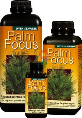 Growth Technology Palm Focus 0,5 l